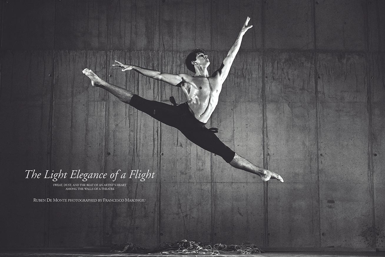 THE LIGHT ELEGANCE OF A FLIGHT by Francesco Marongiu