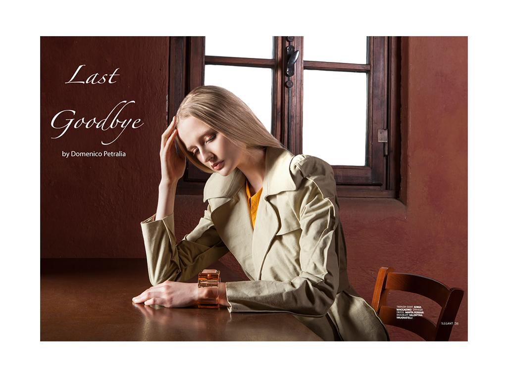 LAST GOODBYE by Domenico Petralia